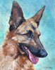 painted head of German shepherd